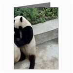 Let Me Kiss You Pandas In Love Greeting Cards (Pkg of 8)