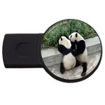 Let Me Kiss You Pandas In Love USB Flash Drive Round (4 GB)