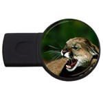Laught Out Loud  Snarl Cougar USB Flash Drive Round (4 GB)