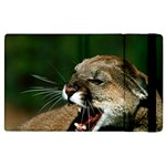 Laught Out Loud  Snarl Cougar Apple iPad 3/4 Flip Case