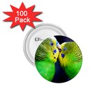 Kiss And Love Lovebird 1.75  Button (100 pack)