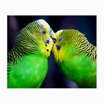 Kiss And Love Lovebird Glasses Cloth (Small)