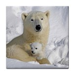 In Moms Arm Mothers Love Tile Coaster