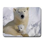 In Moms Arm Mothers Love Small Mousepad