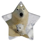 In Moms Arm Mothers Love Star Ornament (Two Sides)