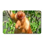 Proboscis Big Nose Monkey Magnet (Rectangular)
