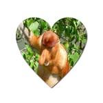 Proboscis Big Nose Monkey Magnet (Heart)