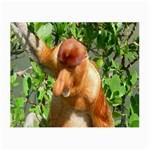 Proboscis Big Nose Monkey Glasses Cloth (Small)