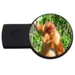 Proboscis Big Nose Monkey USB Flash Drive Round (4 GB)