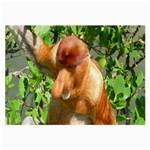 Proboscis Big Nose Monkey Glasses Cloth (Large)