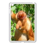Proboscis Big Nose Monkey Apple iPad Mini Case (White)