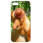 Proboscis Big Nose Monkey Apple iPhone 5 Hardshell Case with Stand