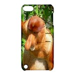 Proboscis Big Nose Monkey Apple iPod Touch 5 Hardshell Case with Stand