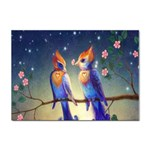Peaceful And Love Birds Sticker (A4)