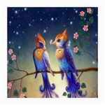 Peaceful And Love Birds Glasses Cloth (Medium, Two Sides)