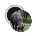 Wild Animal Rhino 2.25  Magnet