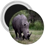Wild Animal Rhino 3  Magnet