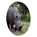 Wild Animal Rhino Ornament (Oval)