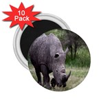 Wild Animal Rhino 2.25  Magnet (10 pack)