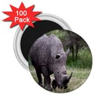 Wild Animal Rhino 2.25  Magnet (100 pack)