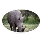 Wild Animal Rhino Magnet (Oval)