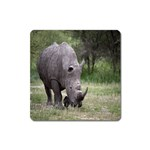 Wild Animal Rhino Magnet (Square)