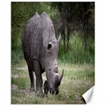 Wild Animal Rhino Canvas 16  x 20