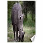 Wild Animal Rhino Canvas 24  x 36