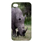 Wild Animal Rhino Apple iPhone 4/4S Premium Hardshell Case