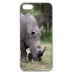 Wild Animal Rhino Apple Seamless iPhone 5 Case (Clear)