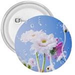 White Gerbera Flower Refresh From Rain 3  Button