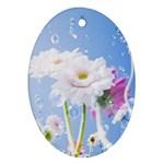 White Gerbera Flower Refresh From Rain Ornament (Oval)