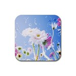 White Gerbera Flower Refresh From Rain Rubber Square Coaster (4 pack)
