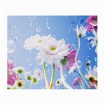 White Gerbera Flower Refresh From Rain Glasses Cloth (Small)