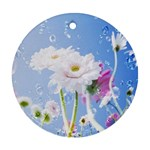 White Gerbera Flower Refresh From Rain Round Ornament (Two Sides)