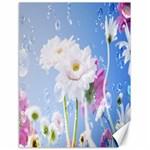 White Gerbera Flower Refresh From Rain Canvas 18  x 24