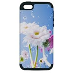 White Gerbera Flower Refresh From Rain Apple iPhone 5 Hardshell Case (PC+Silicone)