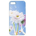 White Gerbera Flower Refresh From Rain Apple iPhone 5 Hardshell Case with Stand
