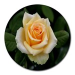 Yellow Rose Round Mousepad