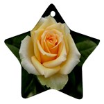 Yellow Rose Ornament (Star)