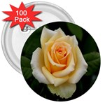 Yellow Rose 3  Button (100 pack)