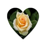 Yellow Rose Magnet (Heart)