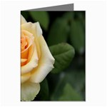 Yellow Rose Greeting Cards (Pkg of 8)