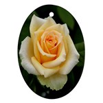 Yellow Rose Oval Ornament (Two Sides)