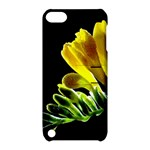 Yellow Freesia Flower Apple iPod Touch 5 Hardshell Case with Stand