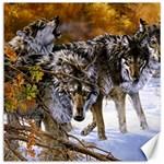 Wolf Family Love Animal Canvas 20  x 20