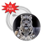 Angry Leopard 2.25  Button (10 pack)