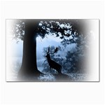 Animal Deer In Forest Postcard 5  x 7