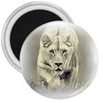 Animal Lion Hunting For Love 3  Magnet