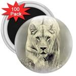 Animal Lion Hunting For Love 3  Magnet (100 pack)
